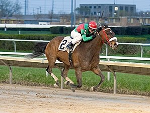 Luv Bandit wins the 2015 Milwaukee Avenue Handicap.