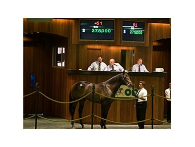 Colt; War Front - Call Your Beau by Caller I. D. brought $275,000 during the first session of the Ocala Breeders' Sales Co. March select sale of 2-year-olds in training.