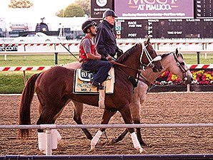 D. Wayne Lukas and Mr. Z