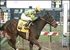 Dixie Talking became the 100th stakes winner for her sire, Dixieland Band.