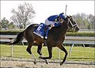 'Tizzy Leaves Foes Dizzy in Lexington Stakes