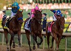 American Pharoah, Firing Line, and Dortmund approach the Kentucky Derby finish.