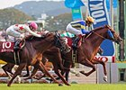 American Bloodlines Dominate Japan Cup