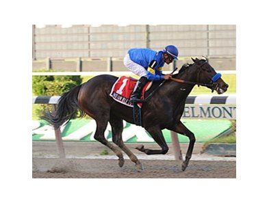 "Indian Blessing cruises in the Gallant Bloom.<br><a target=""blank"" href=""http://www.bloodhorse.com/horse-racing/photo-store?ref=http%3A%2F%2Fpictopia.com%2Fperl%2Fgal%3Fprovider_id%3D368%26ptp_photo_id%3D5997609%26ref%3Dstory"">Order This Photo</a>"
