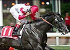 Roses in May leads American parade in Dubai World Cup.