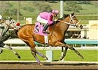Bluesthestandard, en route to victory in the Palos Verdes.