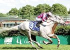 Silverfoot won the Louisville Handicap 3 straight times, beginning in 2004 (shown).