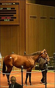 Elusive Quality tops Thursday morning session at $850,000.