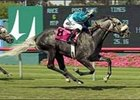 Runaway Dancer won the 2005 Jim Murray for trainer Dan Hendricks as a 17-1 shot.