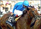 Refuse To Bend Determined in Coral-Eclipse