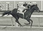 Seattle Slew at Hialeah