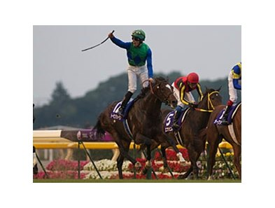 Tosen Jordan partnered with Italian jockey Nicola Pinna to upset a strong field in the 2011 Emperor's Cup at Tokyo Racecourse.