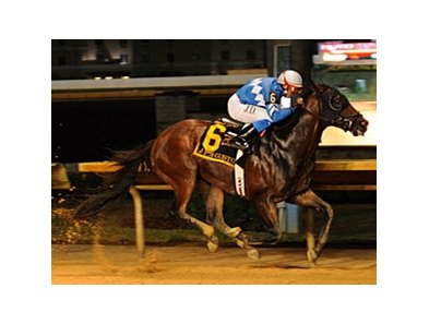 J P's Gusto dominates the Red Legend Stakes at Charles Town.