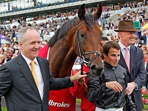 Montjeu Duo Go Long for European Classic Wins