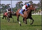 Astra (3), shown winning the 2001 Beverly Hills Handicap.