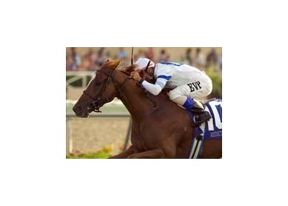 "Medici Code<br><a target=""blank"" href=""http://www.bloodhorse.com/horse-racing/photo-store?ref=http%3A%2F%2Fpictopia.com%2Fperl%2Fgal%3Fprovider_id%3D368%26ptp_photo_id%3D2169153%26ref%3Dstory"">Order This Photo</a>"