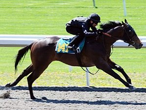 Keeneland Under Tack Show Produces Fast Times