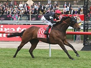 All Silent Makes Noise at Flemington