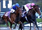 Horse of the Year Tiznow, successfully defended his title in the Breeders' Cup Classic.
