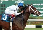 Any Given Saturday, won Sam F. Davis Stakes in 2007 debut.