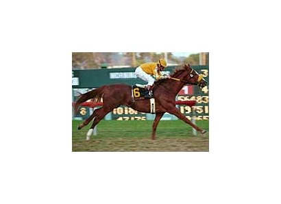 Hollywood Turf Cup winner Bienamado tops the field for the San Juan Capistrano.