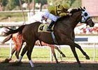 Guided Tour shipped to Southern California to win Sunday's San Antonio at Santa Anita.
