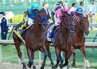 "American Pharoah (left), Firing Line (center), and Dortmnd (right) in the Kentucky Derby.<br><a target=""blank"" href=""http://photos.bloodhorse.com/TripleCrown/2015-Triple-Crown/Kentucky-Derby-141/i-8gV6TXT"">Order This Photo</a>"