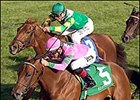 Ticker Tape (5) holds on to win the Queen Elizabeth II Challenge Cup, Saturday at Keeneland.