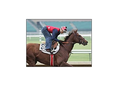 Kitten's Joy, on track at Lone Star Park.