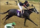 Macho Uno, winning the Breeders' Cup Juvenile.