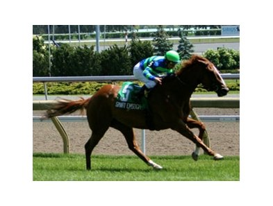 Six-year-old Smart Enough wins his second Highlander at Woodbine.