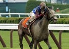 Society Selection, winner of the Test Stakes last year, has been retired.