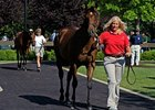 Fasig-Tipton Kentucky July Yearling Sale