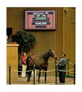 Glasgow's Gold, the dam of Swift Temper, equaled the $300,000 high price so far at the Jan. 11 session of the Keeneland sale.