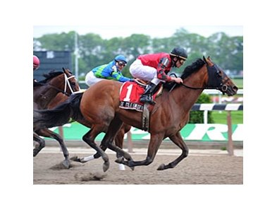 "Seattle Smooth, who won the Shuvee in 2009, tries again in 2010.<br><a target=""blank"" href=""http://www.bloodhorse.com/horse-racing/photo-store?ref=http%3A%2F%2Fpictopia.com%2Fperl%2Fgal%3Fprovider_id%3D368%26ptp_photo_id%3D8117811%26ref%3Dstory"">Order This Photo</a>"