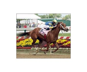 Pool Land wins the Allaire duPont Breeders' Cup Distaff at Pimlico.