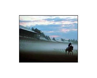 "The Saratoga meet is off to a beautiful start.<br><a target=""blank"" href=""http://www.bloodhorse.com/horse-racing/photo-store?ref=http%3A%2F%2Fpictopia.com%2Fperl%2Fgal%3Fprovider_id%3D368%26ptp_photo_id%3D408404%26ref%3Dstory"">Order This Photo</a>"