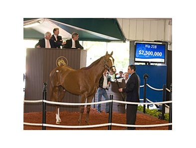 $2.3 million Distorted Humor colt, which topped the Fasig-Tipton Florida select sale of 2-year-olds in training, has been named Brock.