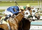 Going Wild (yellow cap) wins the San Miguel.