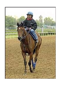 Hall of Fame jockey Angel Cordero, aboard a Todd Pletcher-trained horse at Churchill Downs.