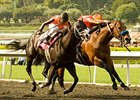 "Ventana (right) outfights Gato Go Win to win the Potrero Grande Handicap.<br><a target=""blank"" href=""http://www.bloodhorse.com/horse-racing/photo-store?ref=http%3A%2F%2Fpictopia.com%2Fperl%2Fgal%3Fprovider_id%3D368%26ptp_photo_id%3D8874608%26ref%3Dstory"">Order This Photo</a>"