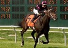 Bay Meadows Races Toward Final Call