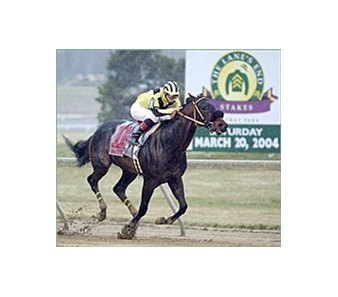 Sinister G wins the Lane's End Stakes Saturday at Turfway Park.