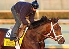 "Uncle Mo<br><a target=""blank"" href=""http://www.bloodhorse.com/horse-racing/photo-store?ref=http%3A%2F%2Fpictopia.com%2Fperl%2Fgal%3Fprovider_id%3D368%26ptp_photo_id%3D9723036%26ref%3Dstory"">Order This Photo</a>"