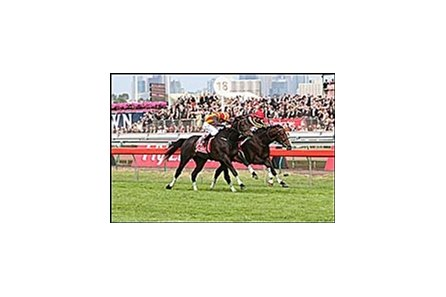 Delta Blues, defeating stablemate Pop Rock in the Melbourne Cup.