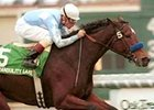 Grade I Winner Tranquility Lake Retired