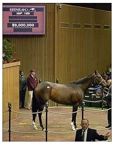 Bid tops out at $9 million for  champion mare Ashado.