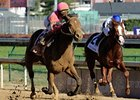 "Caleb's Posse flies home late to win the Dirt Mile.<br><a target=""blank"" href=""http://www.bloodhorse.com/horse-racing/photo-store?ref=http%3A%2F%2Fpictopia.com%2Fperl%2Fgal%3Fprovider_id%3D368%26ptp_photo_id%3D9729072%26ref%3Dstory"">Order This Photo</a>"