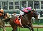 Gr. II Winner Saint Anddan Retires