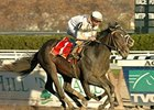"Court Vision wins the Nov. 24 Remsen Stakes at Aqueduct in spectacular fashion.<br><a target=""blank"" href=""http://www.bloodhorse.com/horse-racing/photo-store?ref=http%3A%2F%2Fpictopia.com%2Fperl%2Fgal%3Fprovider_id%3D368%26ptp_photo_id%3D2859610%26ref%3Dstory"">Order This Photo</a>"